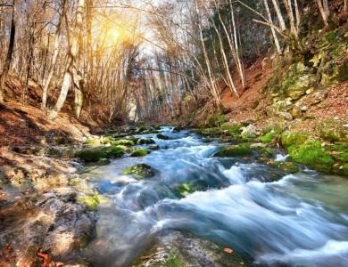 caccia alla beccaccia Crimea Montefeltro