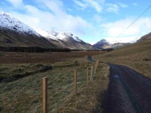 highland caccia al cervo in Scozia Montefeltro