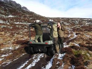 caccia al crevo in scozia Montefeltro