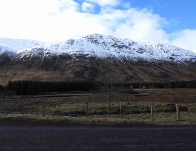 Caccia al cervo in Scozia nelle colline innevate Montefeltro