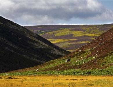 caccia al capriolo in scozia Montefeltro