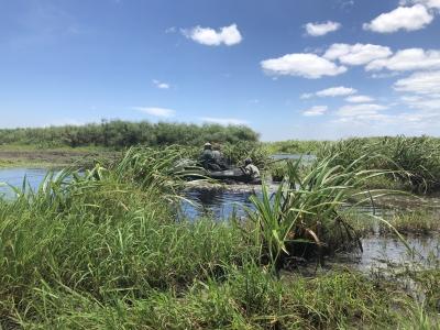 viaggi di caccia viaggi in africa mozambico bufalo montefeltro 2