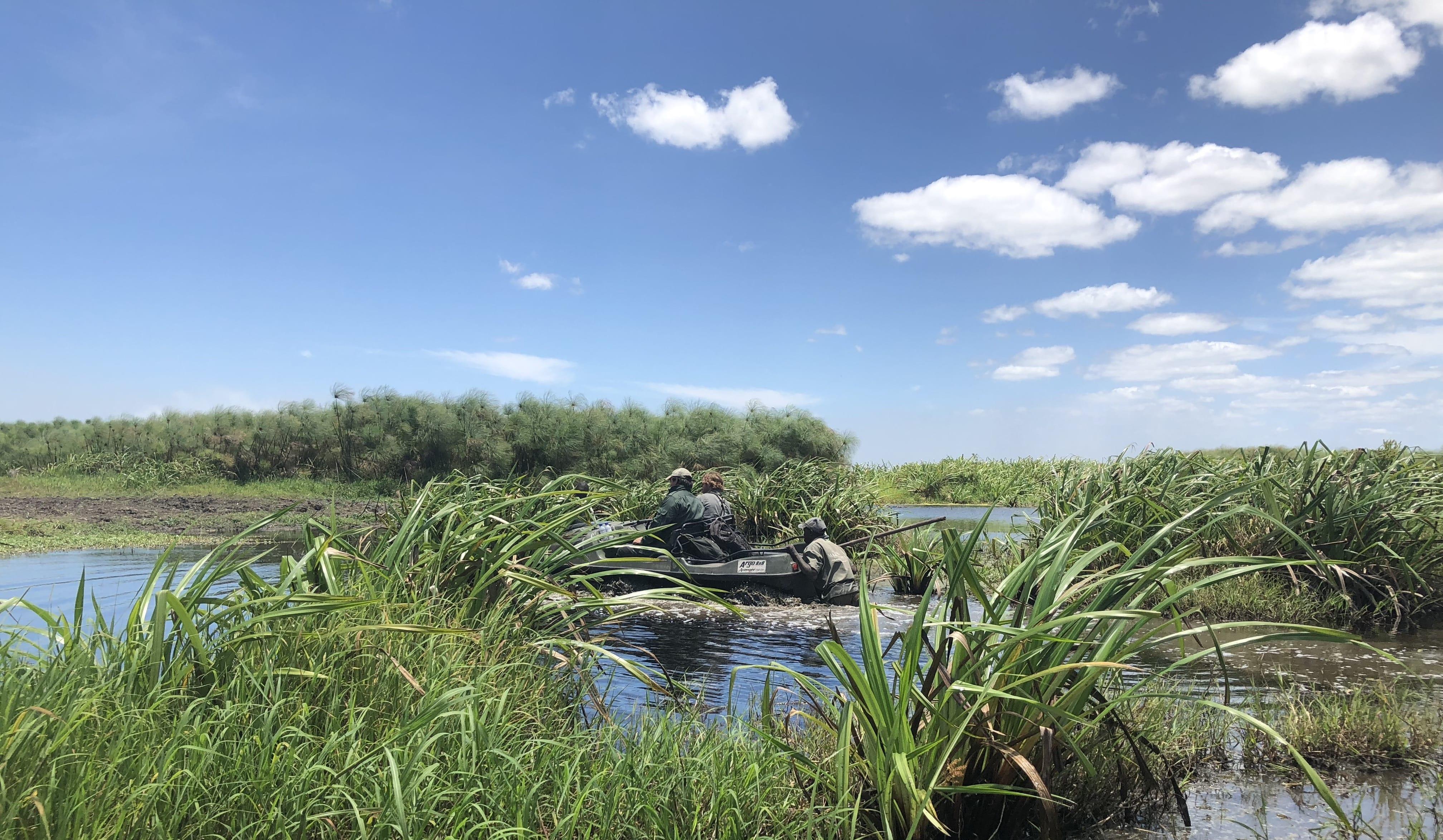 Caccia al bufalo in Mozambico