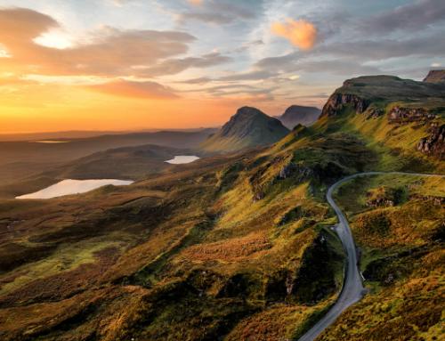 Cosa offre la caccia in Scozia e quali animali è possibile cacciare?