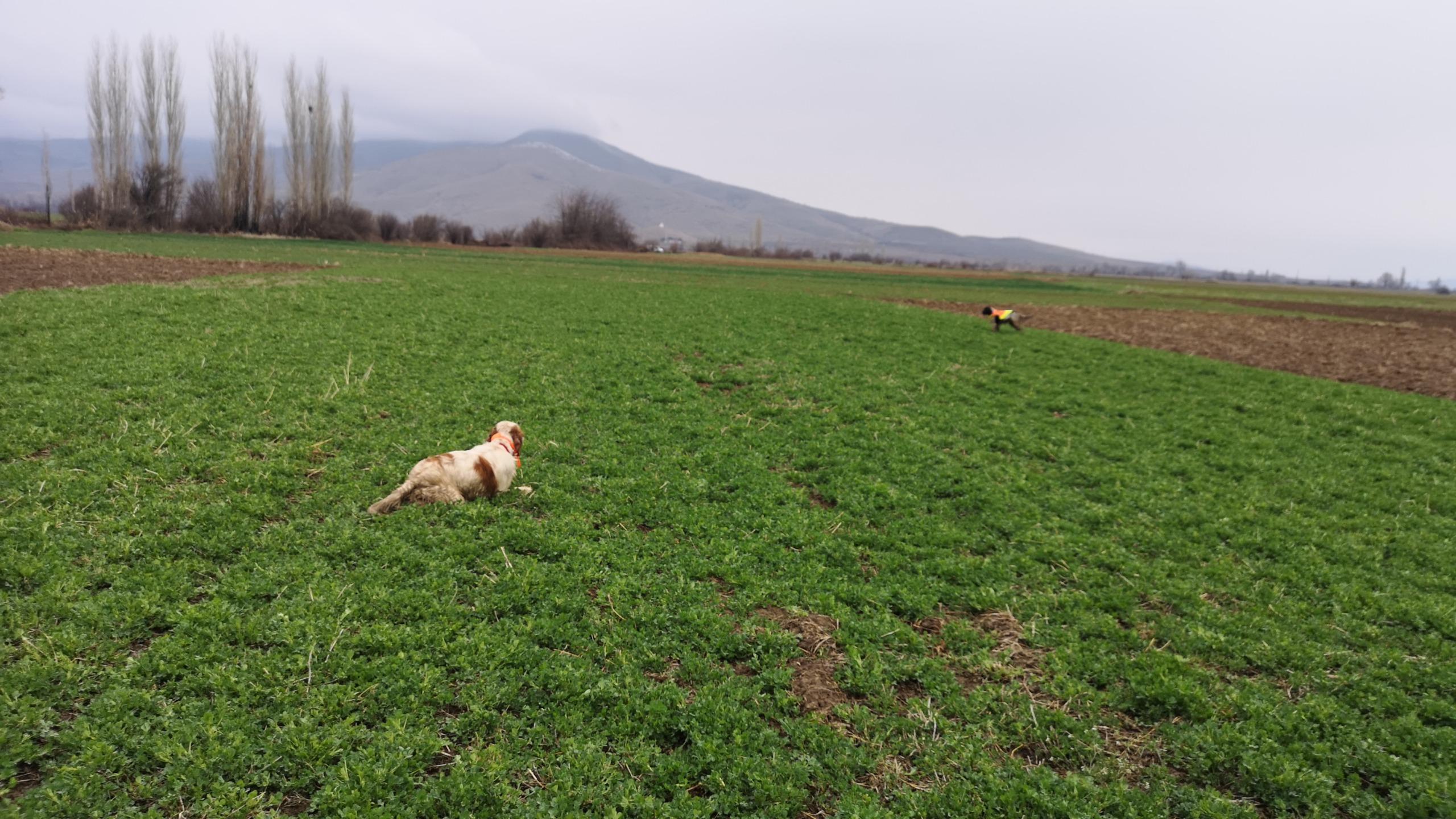 Addestramento in Macedonia