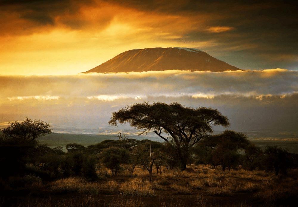 caccia in tanzania