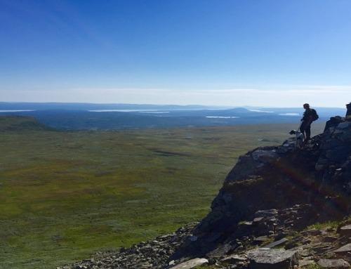 Caccia in Svezia: consigli per una caccia al top!