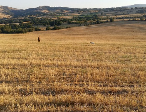 La mia prima volta a caccia in Macedonia